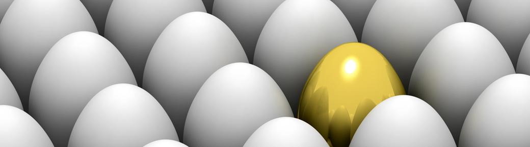 14-Eggs-957x271